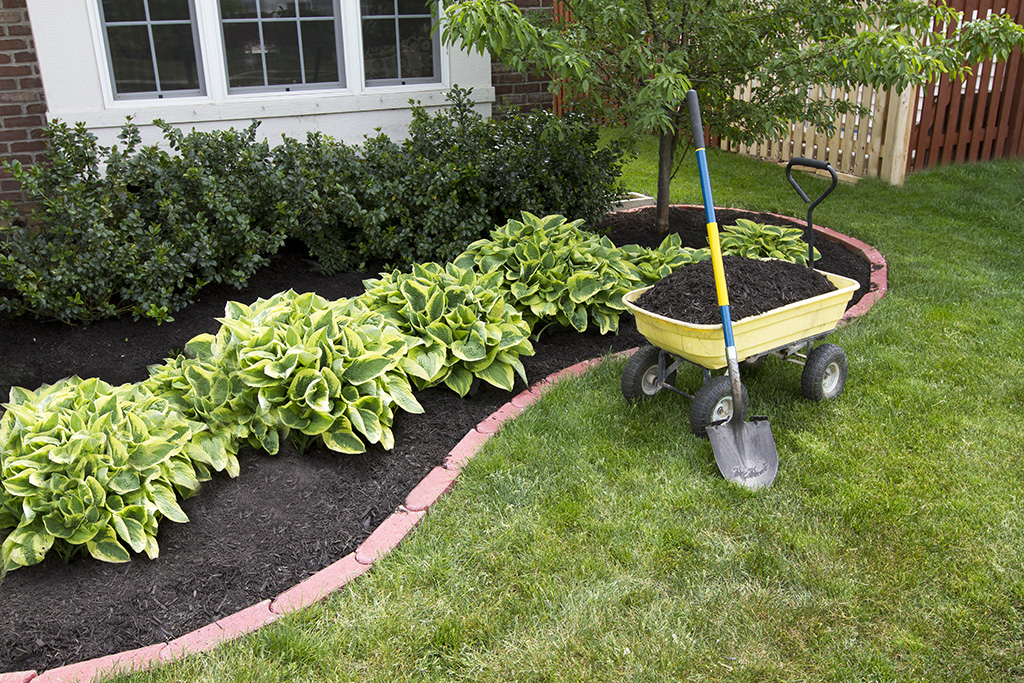 Landscaping Ithaca NY